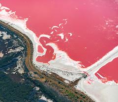 Salt Pan 2.jpg (Hamsters Pics) Tags: red abstract landscape colours aerial adelaide algae saltpan