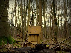 Lost... (Spookyfilm) Tags: toys danbo danboard toysphotography