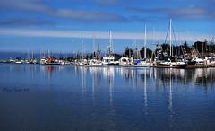 SAILBOATS REFLECTIONS (mariagrandi985) Tags: boat sailboat reflections seascape marina eurekacaliforniausa blue somethingblue sky clouds harbor white outdoor composition beautifulseascape serene serenity highcontrast sea bluetoyou water