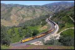 UP 2585 (golden_state_rails) Tags: cliff up pacific union pass tehachapi et45ah mwcrvc