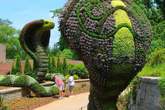 Giant Sculptures Made of Plants and Flowers 8
