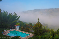 Hotel With A View (Sound Quality) Tags: colombia santander chicamocha 45a garden restaurant resturante hotel wwwmichaelwashingtonaecomhttpwwwflickrcomphotosmichaelwashingtonphotography landscape mountains nature natural pool fog morning sunrise bamboo trees andes andesmountains palmtrees outdoor view vista buenavista canon 50d serene inspiration southamerica latinamerica americalatina naturaleza