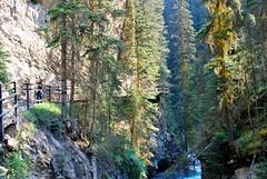 Au coeur de la nature (joelledewael) Tags: canada johnstoncanyon parcnationaldebanff