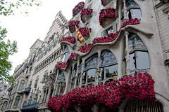 Casa Batll #msqueunarosa (BeatrizVilela) Tags: barcelona flores architecture de casa gaudi catalunya jordi sant modernismo antoni passeig gracia modernisme batllo flors cataluna catalunha instagram wwim13 wwim13barcelona