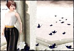 Flight of Light (Rhenu Resident) Tags: pm ikon luas tableauvivant glamaffair