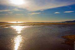 Tarifa, 8 de abril de 2016 (Franci Esteban) Tags: ocean color sol contraluz playa atlntico tarifa rayos contrastes charca oceanoatlntico playadeloslances parajenaturaldeloslances factorhumano