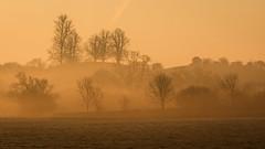 Golden (Damian_Ward) Tags: morning mist sunrise photography dawn frost buckinghamshire mound bucks rothschild aylesburyvale damianward burnhill eythrope damianward