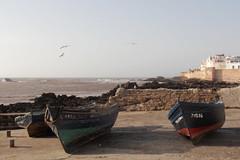 Essaouira bay (nyoz_fr) Tags: travel mountains cat morroco maroc atlas