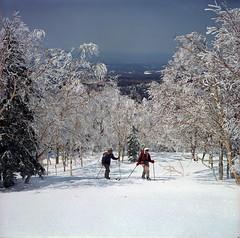 Ski hiking in spring (threepinner) Tags: snow ski japan spring hokkaido skiing sunny negative   biei hokkaidou  selfdeveloped 75mm  iso160 northernjapan  f34 ebcfujinon mountainsnaps  mtmaruyama taisetsunationalpark fujiholga120s