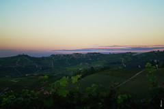 Sunset in Alba (giuls gilli) Tags: pink blue sky italy green beauty shoot alba c paesaggio collina langhe monferrato vigneti