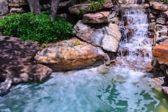 NiagaraDreaming (SoniaGallery.com) Tags: blue shadow sun plant water garden waterfall rocks flickr florida outdoor splash suds rocas ocala minifall pierdas soniagallery soniaargenio bysoniaa