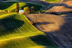 Spring, Eastern Washington (garshna) Tags: green field landscape shadows farm wheat washingtonstate wheatfields palouse steptoebutte