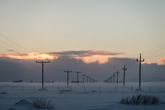 electricity lines (Fjola Dogg) Tags: winter ice canon island iceland islandia europe sland winterwonderland islande vetur electricitylines islanda islndia islanti islando md evrpa sland islann veturkonungur canonpowershotg7x canong7x padfjoladogg mdfjoladogg