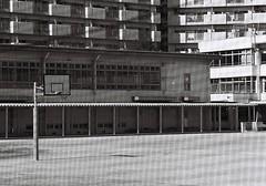 (lemonhats) Tags: school japan walking blackwhite iso400 35mmfilm m42 vintagecamera spotmatic f8 manualfocus 1500 telephotolens classiclens classiccamera orangefilter nerimaku filmphotography hikarigaoka printfilm vintagelens primelens shootfilm tokyoto filmisnotdead asahipentaxsp 105mm28 analoguephotography suburbanpastoral contrastfilter filmisalive mechanicalslr filmcommunity legacyphotography fpper believeinfilm lomographyladygrey400 marumimcya2 supermulticoattakumar28105
