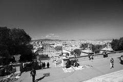 View of Barcelona (Photoz Darkly) Tags: barcelona blackandwhite bw monochrome blackwhite spain espana