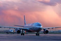 Sunset (Oleg Botov) Tags: pink sunset sky plane airport aircraft aviation airbus spotting airliners avia aeroflot svo   planespotting  sheremetyevo  avgeek  uuee  planeporn crewlife slavniyoleg