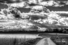 God's light on the path ahead. (Edward Dullard Photography. Kilkenny, Ireland.) Tags: kilkenny ireland sky bw nature clouds landscape camino path eire edwarddullard oldpicturesofkilkenny