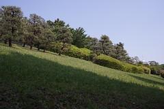 DSC00187 (koyaman3422) Tags: nikon sony 28mm harajuku
