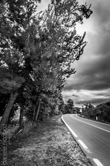 Fearless (Daniele Nicolucci photography) Tags: road street trees urban blackandwhite italy plants signs storm nature weather tarmac clouds landscape concrete countryside blackwhite streetlamps country overcast eerie creepy vegetation leaning cloudporn outskirts fearless abruzzo chieti