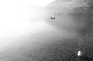 fisherman & swan
