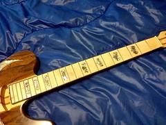 Tele Custom work in progress (2)os 1000 (Lox Pix) Tags: lox loxpix guitar collection bass mandolin fender gibson yamaha ibanez rickenbacker vintage beatle violin shape kent sleekline bowhunter trump squier stratocaster telecaster hofner loxwerx l0xpix
