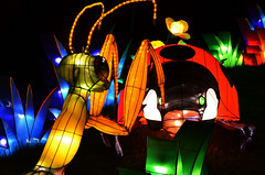 Mantis Lanterns (pokoroto) Tags: autumn canada calgary night mantis zoo october alberta lanterns 10 2015     kannazuki   themonthwhentherearenogods 27