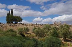 imgp3727 (Mr. Pi) Tags: ruin hills morocco volubilis archaeologicalsite