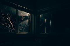 outside (Hummingdust) Tags: windows urban reflection silhouette night dark utah nikon mood moody shadows 365 melancholy tamron f28 ogden 2470 365days utahphotographer nikondf