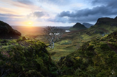 King of Quiraing (Antonio Carrillo (Ancalop)) Tags: mountains skye sunshine canon landscape scotland isleofskye paisaje escocia amanecer 1740mm montaas ecosse trotternish quiraing canon1740mmf4l antoniocarrillo highlads ancalop lucroit