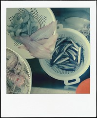 #fish (ghiro1234 []) Tags: polaroid rosso cena arancione pesce adriatico mangiata seppia griglia alici grigliata alforno dallalto guanto pannocchie mercatodelpesce pescato mazzancolle poladroid pesceazzurro cenadipesce canocchie sughetto gratinati sardoncini sogliole venerdpesce sugodipesce ghiro1234 nokialumia630 guantodacucina