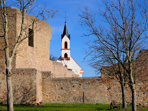 Neu-Bamberg Burgruine