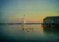 End of Day (SLEEC Photos/Suzanne) Tags: sunset seascape lensbaby sailboat harbor pier boat coastal textured flypaper