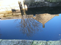 march 2016 mirror image (stellaturner448) Tags: reflection tree water mirror canal image upsidedown outdoor mirrored serene ladder tranquil structural