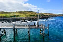 Kangaroo Island, Australia. (RViana) Tags: australien australie oceania     ozeanien  ocanie  oceanien   oseania