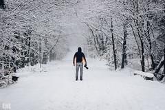 The hunt (Kevin Kistermann) Tags: camera wood schnee winter snow man belgium belgie eifel venn wald kamera hunt hautes fagnes jagd belgien hohes