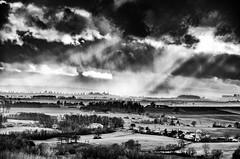 L'apiculteur (Fabrice Le Coq) Tags: bw soleil noir lumière du nuages paysage et blanc fabricelecoq