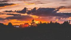 ~ (ARTEMY KOZODAEV) Tags: trees sunset wild summer sky cloud sun colour clouds canon way lens eos russia wide mm dslr 50 smolensk gagarin