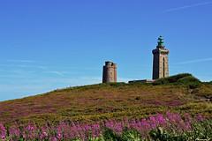 La vieille tour et le nouveau phare du Cap Frehel (florence.V) Tags: mer france nature 22 bretagne breizh phare bruyere capfrehel ctesdarmor