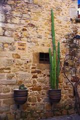 Pals (Catalogne/Espagne) (PierreG_09) Tags: espaa spain village pals catalunya espagne hdr ville catalua espanya catalogne pathscaminhos