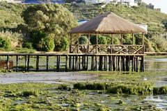 DSC01021 (hofsteej) Tags: lagune nature lagoon morocco maroc atlanticocean oualidia