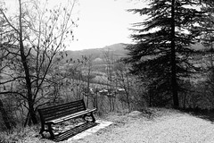 Not all wanderers are lost (antopolicama) Tags: world travel trees sky blackandwhite italy green nature grass rural bench landscape lost hope town woods place exploring places hills explore emptyseat wander discover traveler