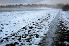 Und ist's denn Snde, Herr, wenn fort (amras_de) Tags: schnee winter camp snow field vinter wiesbaden hiver nieve sneeuw feld pole neve campo invierno neige lumi inverno talvi zima sn nix kar neu sniegas sn sne acker snijeg snjr vetur sauerland talv sneh sneg winterlandschaft nivi hivern pld kis nego snaw ager sniegs wanter hiems iarna zapada dotzheim h sneeu negu tl snh elur ziema snieg kampo iema nieu vintro sneachta hibierno geimhreadh schni ivrn mmernu nu