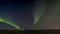 Exploring the universe (ÖE PHOTO (www.oe-photo.com)) Tags: sky green nature night stars landscape iceland adventure astrophotography aurora magical starry auroraborealis örnerlendsson öephoto