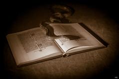 Bookworm (*altglas*) Tags: monochrome sepia buch book snake bible toned bibel schlange heiligeschrift