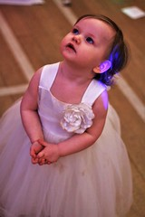 Layla (kimnadineprowse) Tags: lighting wedding baby cute girl canon photography lights toddler little adorable cutie reception tiny bridesmaid flowergirl fascinated