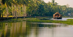 green peaceful water (travelben) Tags: life trees india green tourism nature water composition landscape boats boat canal asia outdoor indian south traditional documentary houseboat kerala vert daily h2o palm reflet vegetation asie cochin quai kochi backwaters houseboats inde kumarakom paisible