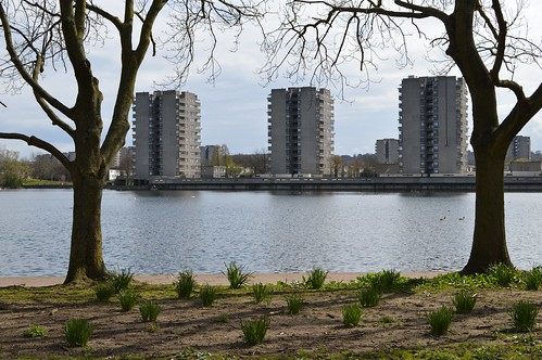 South Mere and housing blocks