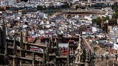 Messy, fascinating rooftops of Sevilla [Explore 28-04-2016 ! ] (andbog) Tags: city houses roof panorama espaa building church architecture sevilla spain cityscape view rooftops cathedral widescreen sony tetti gothic edificio catedral iglesia seville case andalucia chiesa explore vista es alpha sonya andalusia sel overlook 169 architettura spagna pinnacles csc citt cattedrale oss 16x9 plazadetoros siviglia ilce sonyalpha inexplore mirrorless 1650mm a6000 sony emount selp1650 sonyalpha6000 ilce6000 sonya6000 sonyilce6000 sony6000 6000