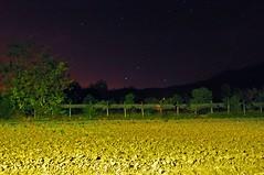 Nocturna (victorvargas3) Tags: estrellas nocturnas