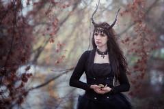 Elfia Haarzuilen 2016 - 6 (henk.vanrijssen) Tags: fairytale elf fantasy eff 2016 elffantasyfair haarzuilen fantasyfair elffantasy elfia